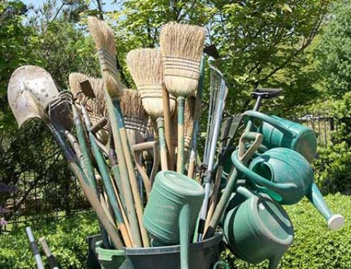 Taking a Closer Look to Gardening Tools